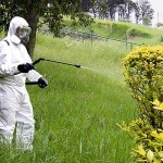 Costo-trattamenti-fitosanitari-Modena